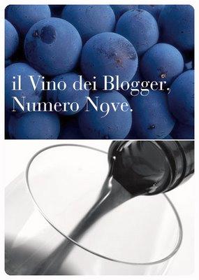 vinodeiblogger9.jpg