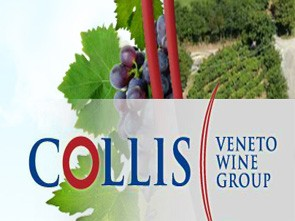 Collis Veneto Wine Group - Società Cooperativa Agricola Consortile