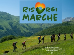 Risorgimarche 2020 Calendario.Terremoto Risorgimarche Anche Per Agroalimentare Area
